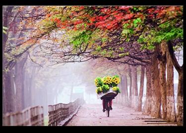 Nguyễn Xuân Chính và tình yêu với nhiếp ảnh