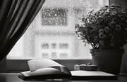 Những vần thơ về ngôi nhà – tổ ấm