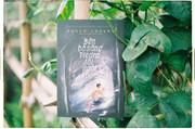 """""""Bên bờ sông Piedra tôi ngồi khóc"""": Tình yêu và đức tin"""