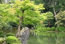 """""""Nơi có những cây tùng xanh biếc"""": Một truyện ngắn hay về hoàng thân Cường Để"""