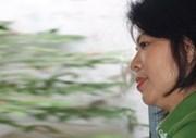 Nguyễn Thị Ánh Huỳnh – Chiếc lá xanh trên những cành xanh