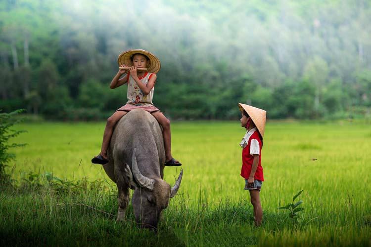 Đời sống thôn quê dung dị qua truyện ngắn Y Ban