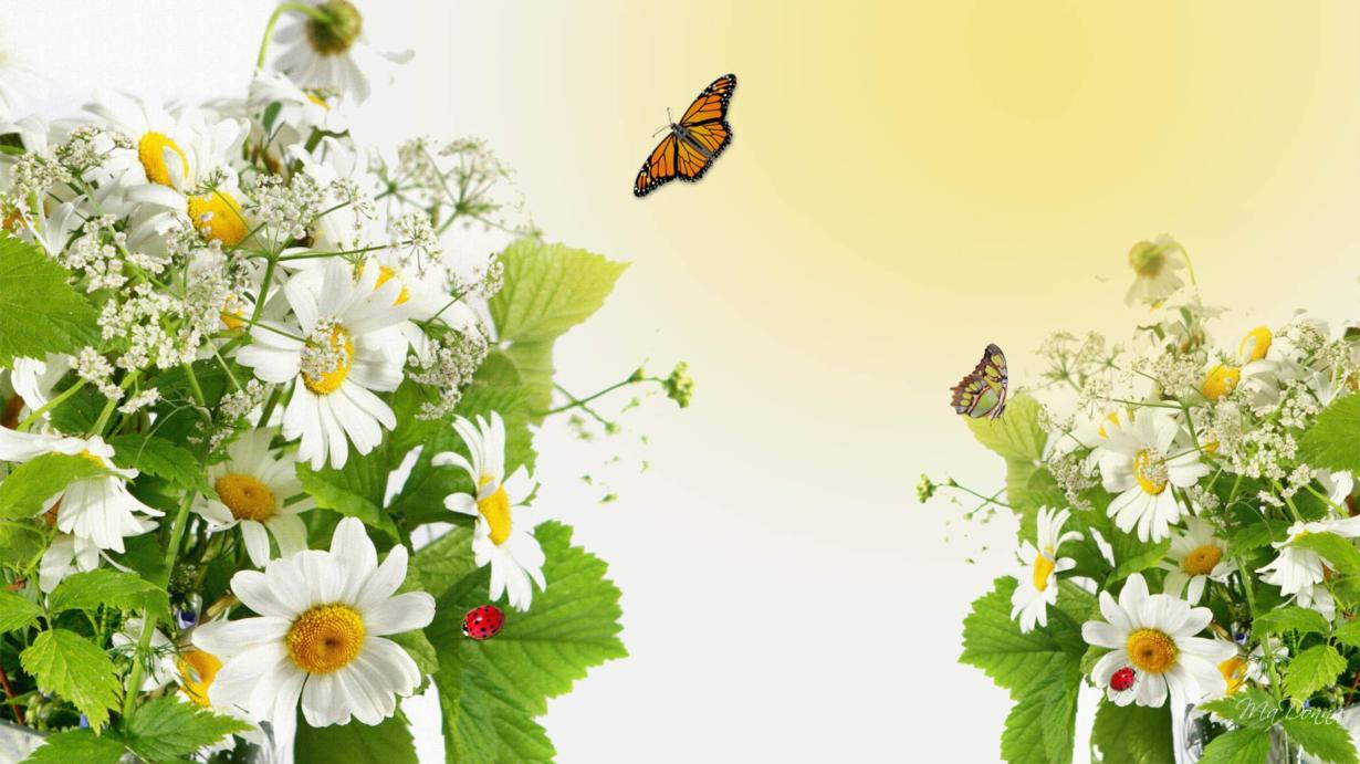 Năm mới, mùa xuân và tình yêu
