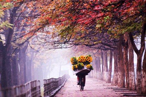 Thơ tình cuối mùa thu
