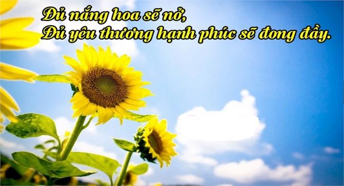 Những bài thơ hạnh phúc